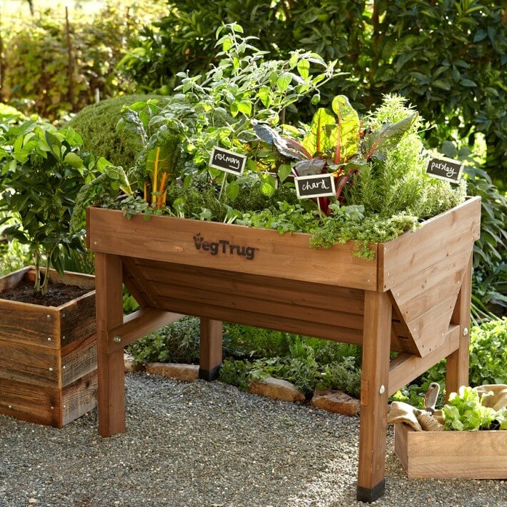 here is an elevated planter that is great for a small vegetable garden if you - Small Vegetable Garden Ideas Pictures