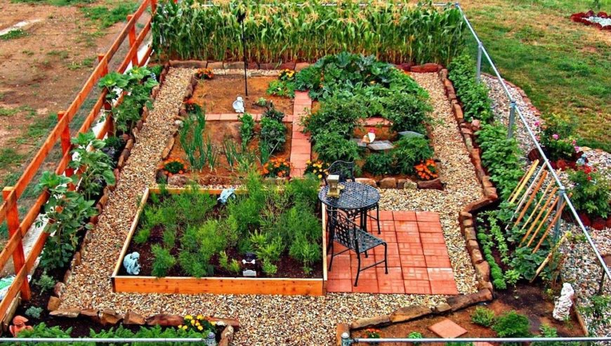 24 fantastic backyard vegetable garden ideas for Home vegetable garden design