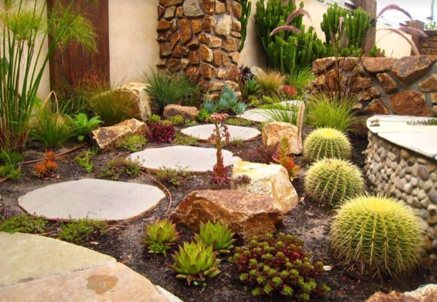 A cactus pairs well with stone and stucco. The colors of a cactus add a contrasting splash of vibrancy and life against the sandy warm colors of the desert.