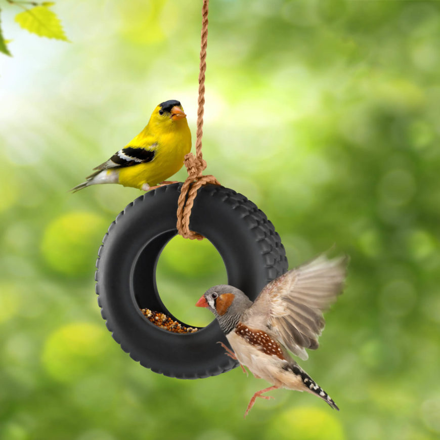 If you like swings, but don't have the space for one, you can can get a swing for visiting critters. A swing styled bird feeder is interesting and lets your winged friends enjoy a swing.