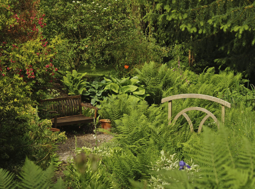 Here is a wooden bench sitting among the plants in a garden. This wooden bench melds perfectly with its surroundings. Its colors and simple lines make this bench feel like a natural part of this landscape.