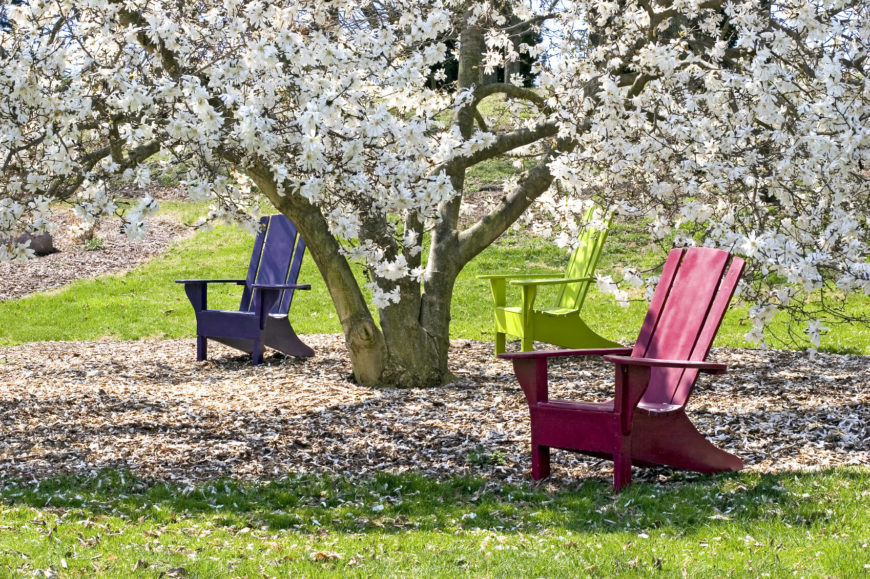 The perfect space for a couple of stylish Adirondack chairs is under a beautiful tree. This provides you with great natural shade as well as an atmosphere perfect for relaxation.