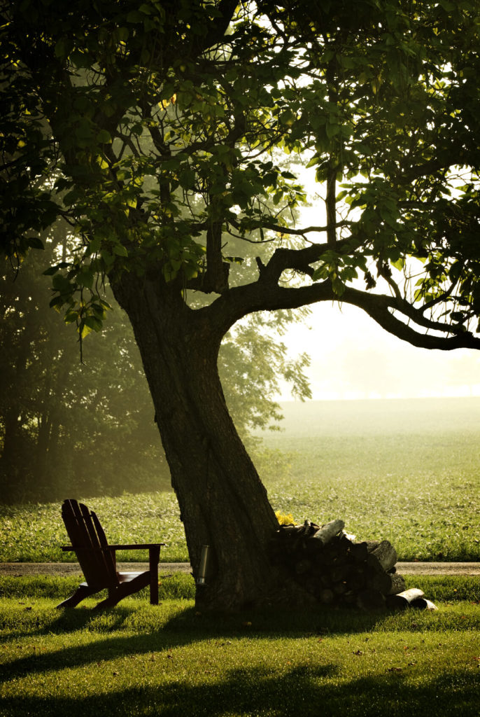 There is nothing more relaxing than kicking back and watching the sunset. Pop your Adirondack chair by your old oak tree and enjoy as another day passes over the misty hills.
