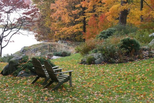Nature can be the greatest show on earth. Sit back in a couple of amazing Adirondack chairs and watch as nature unfolds. If you have a wooded area near you, it can make the perfect focus for your chairs.