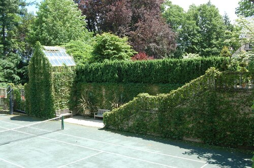 One way to bring a unique look to your court is to let moss and vines overtake your walls. This can tie in with the green finish of your tennis court.