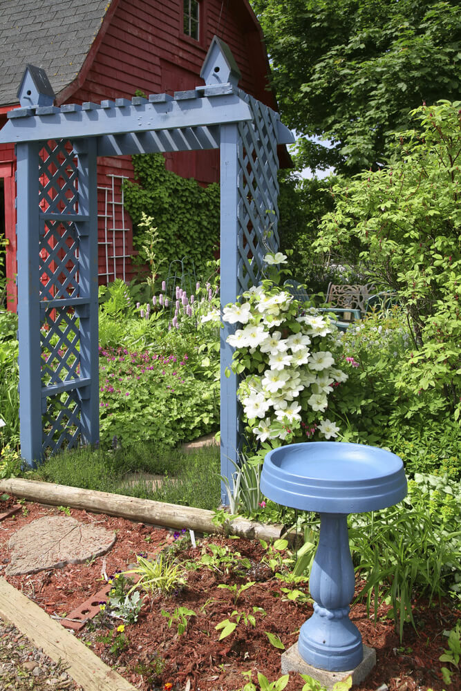 Here is a simple blue bird bath that matches the blue painted wooden lattice nearby. This bird bath works well as it matches other features in the garden. It is also easy to clean and is very low hassle.