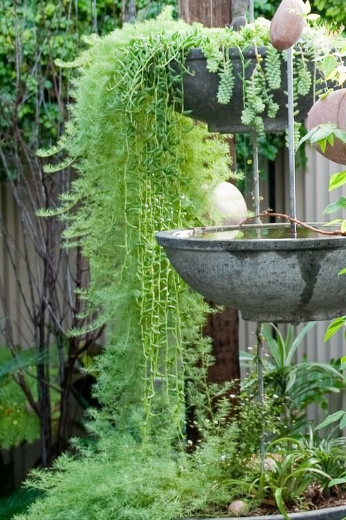 Here is a hanging concrete bird bath. Hanging bird baths are good for keeping them out of the way and saving your ground space. Hanging concrete can be tricky as it is heavy, but the look is well worth it.