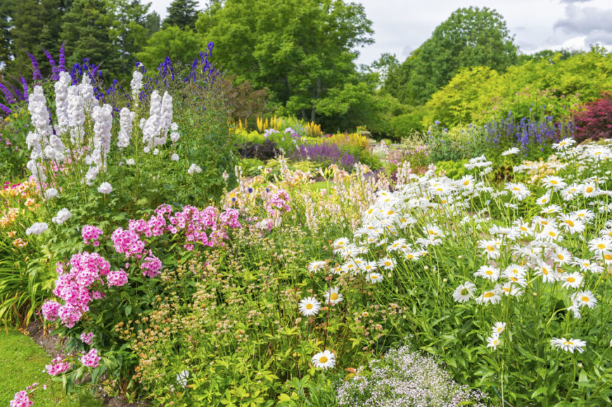 Perennial Flower Garden Ideas find this pin and more on garden perennial garden design ideas the beautiful perennial flowers 47 Gorgeous Perennial Garden Ideas