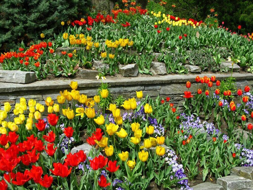 47 gorgeous perennial garden ideas home stratosphere you can create depth in your garden with only two types of flowers this garden mightylinksfo