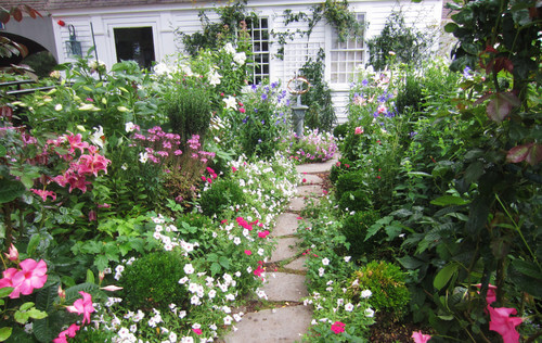 Since some perennials are much taller than others you can layer varying sized flowers to arrange a wild look. Letting the flowers consume your yard is an interesting way to get out of mowing, as well as a way to turn your yard into a magical garden.