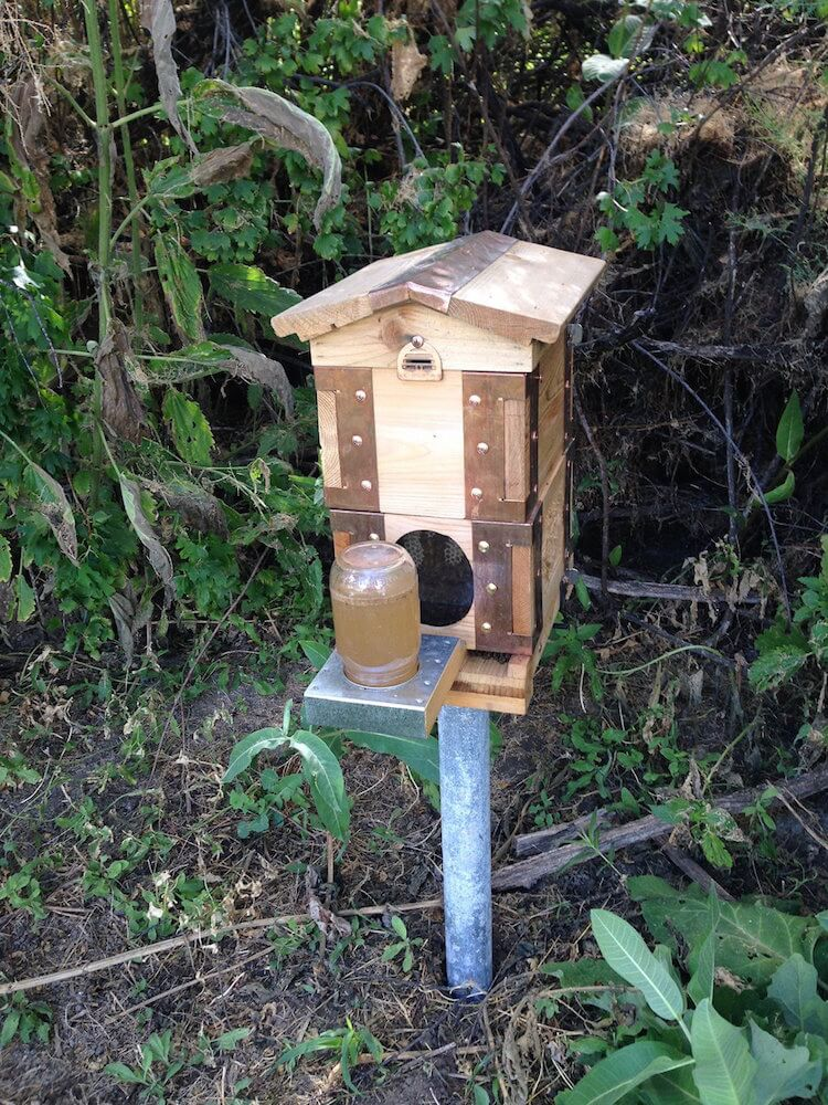The Eco Bee Box is a modular system that allows you to stack multiple miniature bee homes on a single pole, sized exactly as you prefer. The system is great for keeping the insects comfortable and happy, as well as harvesting honey.