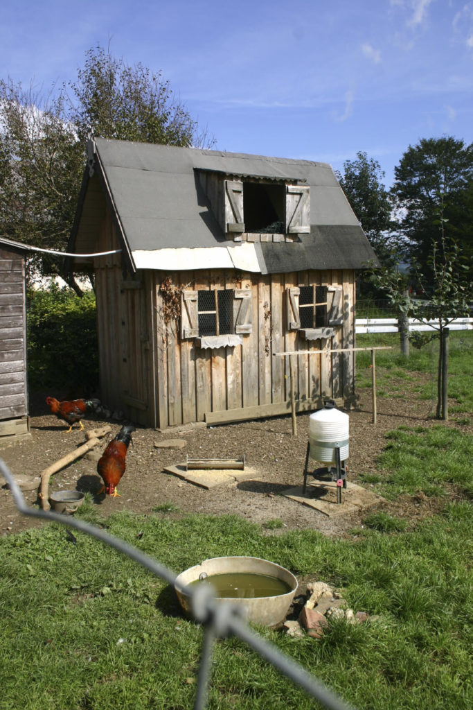 This large chicken coop design is full of whimsy and rustic charm in equal measure. It's got a high roof with secondary opening up top, as well as easy full size access for humans when it comes to feeding time.