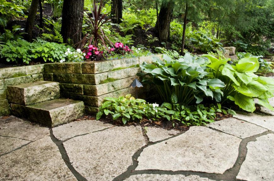 34 vibrant plant garden ideas On filler plants for landscaping