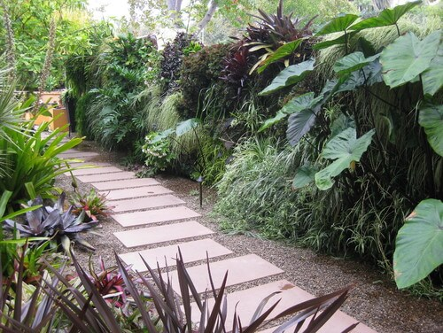If you have the right combination of plants you can create a wall of greenery. This plant wall is made from a variety of plants that makes the wall look wild and untamed. The bramble comes to a sudden halt at the path that runs through this yard.