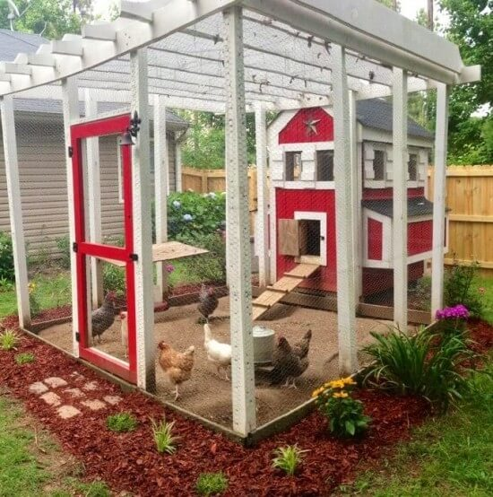 Sometimes what you really need is a larger area for the chickens to run in an enclosed, protected space, while the actual coop remains relatively compact. This brightly colored set is perfect in such a case.