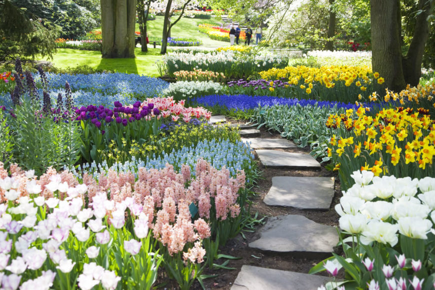 This large garden has a great use of color and patterns. The area is broken up in patches of vibrant colors that line this path perfectly. This is an amazing garden that would make any traveler happy to pass through.