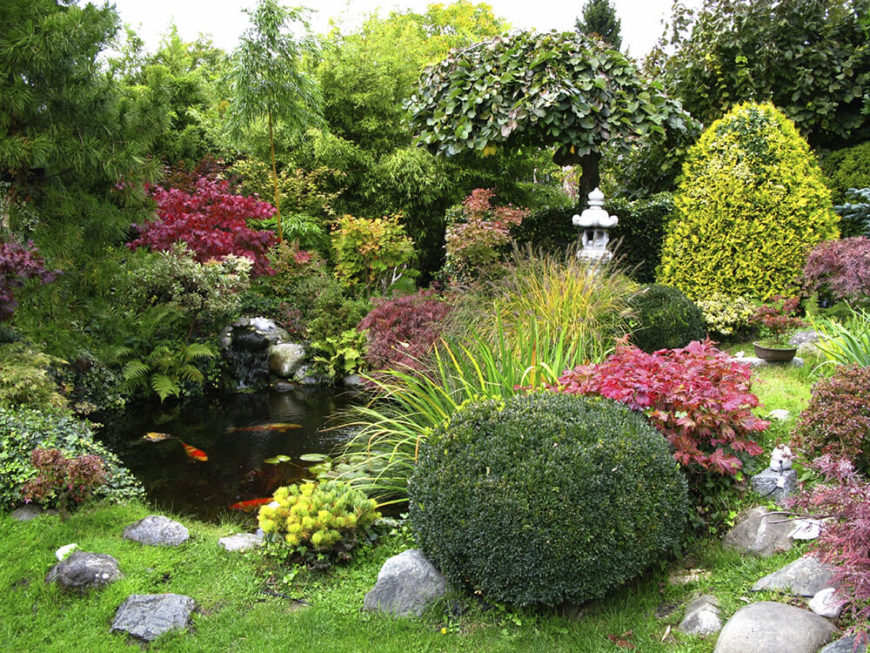 Some of the best plants for large gardens are shrubs and bushes. These plants can cover a great deal of space and create a full and lush look. Plenty of bushes can be used to make your garden feel complete.
