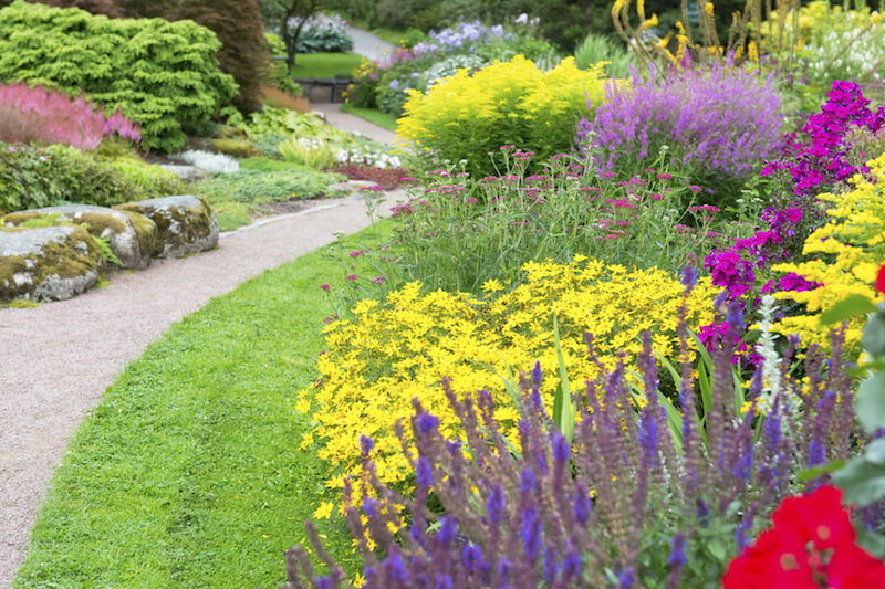 Every space can be brightened up by some flowers. Pinks, yellows, and purples can make a space feel far more cheerful and happy. It brightens any day to see these lovely flowers around a yard.