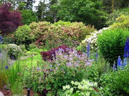 Many different bushes of various shapes and sizes are great at creating drama and levels of depth. Different colors and shapes make an interesting and appealing garden space.