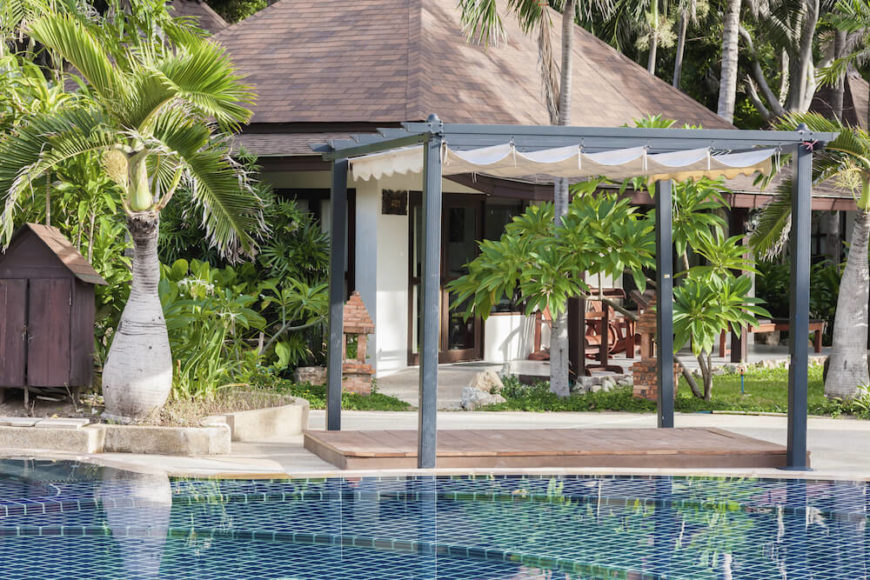 There are many palm tree styles. Some are a bit shorter with a rounder base. This type of palm has great appeal and can give your poolside area a fantastic tropical feel.