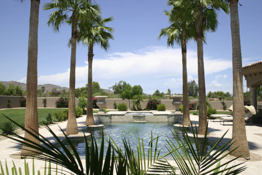 Here are six palm trees lining a pool area. Symmetry is very easy to achieve with palm trees as their growth and shape are manageable and predictable. Some trees may grow in ways not conducive to symmetry, but palm trees are great for it.