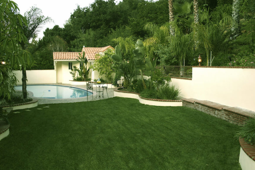 While palms are stunning trees on their own they also pair very well with other plants. In the right arrangement, the tropical aesthetic of the palms can be expanded upon and you can feel like you are in the midst of a lush island.