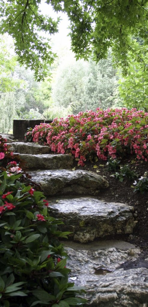 These stones steps are more rugged and naturalistic. They are surrounded by bushes which blends them into the surrounding nature. The uneven and rough surface of these steps really adds to the appeal.