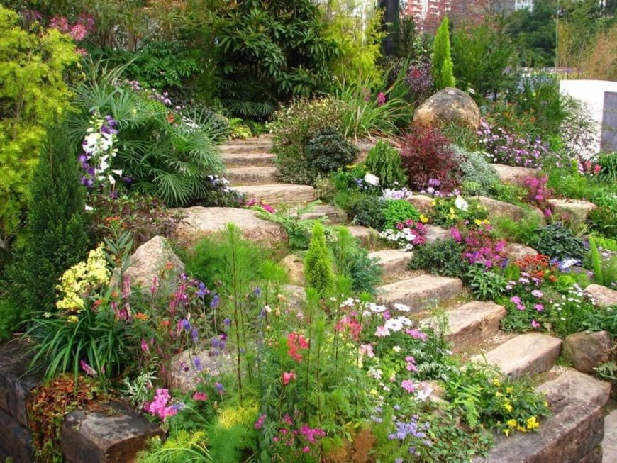 Here are some stone steps placed amongst a wild plant and rock garden. Rock and plant gardens can be a wonderful way to line your stone steps. The rocks seamlessly transition your landscape into steps.