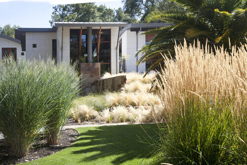Here is a great patch of yard that has four kinds of grass. This nice - 40 Remarkable Backyard Grass Ideas