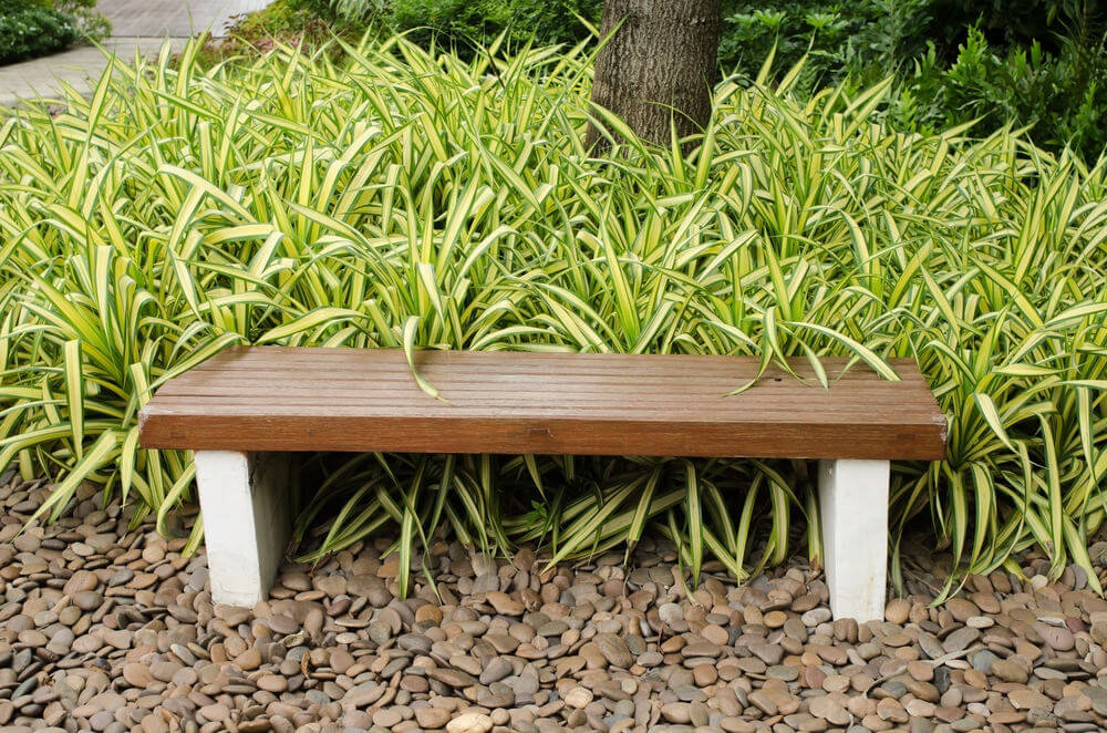 In another place this might be called a sleepers bench, but since it is situated in a garden, we'll still call it a garden bench. Pebbles and foliage meet at this bench.