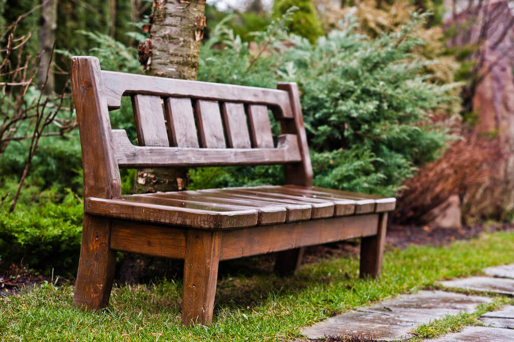 An armless hardwood garden bench is resting against a tree alongside the pathway.
