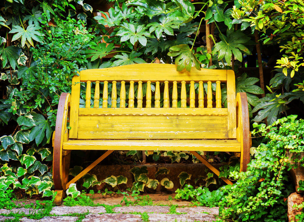 Bright Yellow Paint Gives This Wagon Wheel Garden Bench A Nice Contrast  With The Green Shrubs