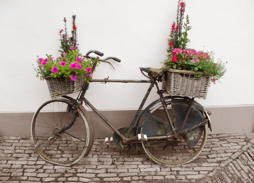Here's a rust-bucket of a bike turned flower planter with wicker basket planters on the front and rear.