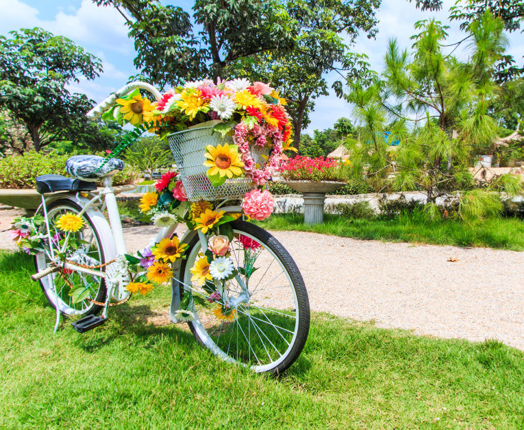 The flower power bicycle.