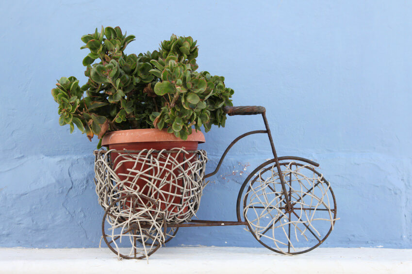 decorative tricycle turned planter that's able to accommodate a large, heavy planter in the rear.