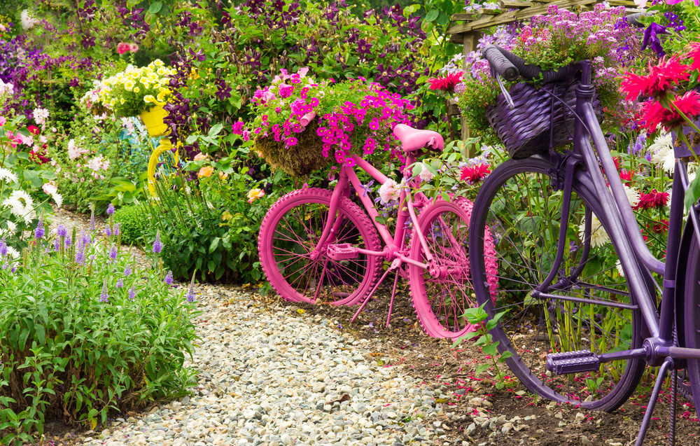 2 bicycles bright pink and purple in a large garden holding flowers.