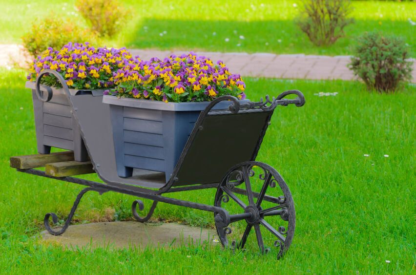 Diy Wooden Wheelbarrow Flower Container Garden Large Flat Pack