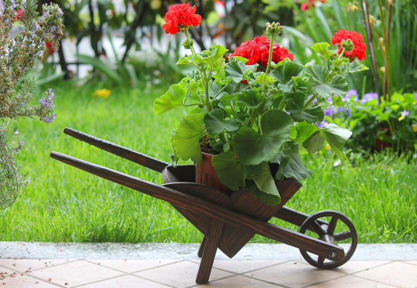 Super duper cute wood decorative wheelbarrow planter perfect for patios and decks.