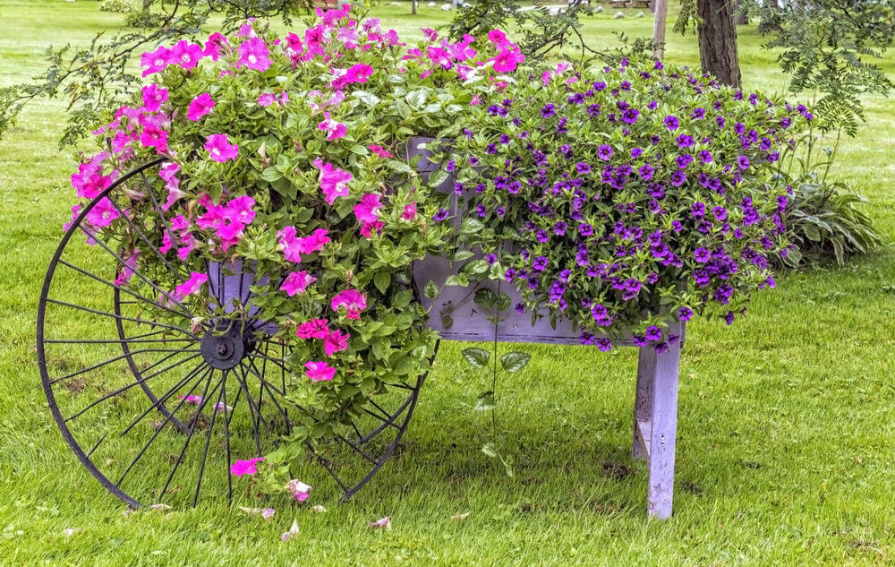 Wow! Spectacular planter with large wheels.