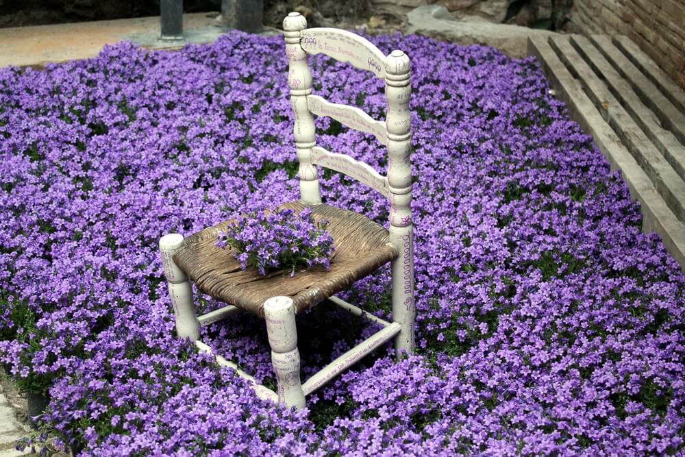 I love this blanket of flowers with chair serving as flower holder in the midst of a flower sea.