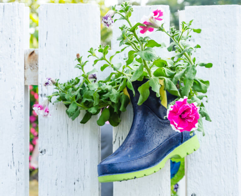 A sleek rubber boot fixed on a white wooden picket fence is used as a clever flower pot and accentuates the lush colors of the flowering plant.