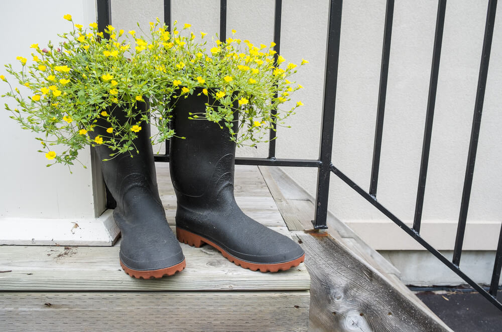 This pair of black gumboots used as planters for these sunshiny colored yellow flowers only proves that the simplicity of black can always spell elegance and a classy look.