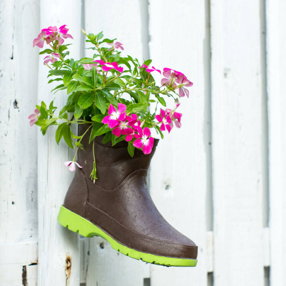 This rubber boot serves as a complimentary flower planter as it helps heighten the colors of the flowers in contrast to its backdrop of a white picket fence.