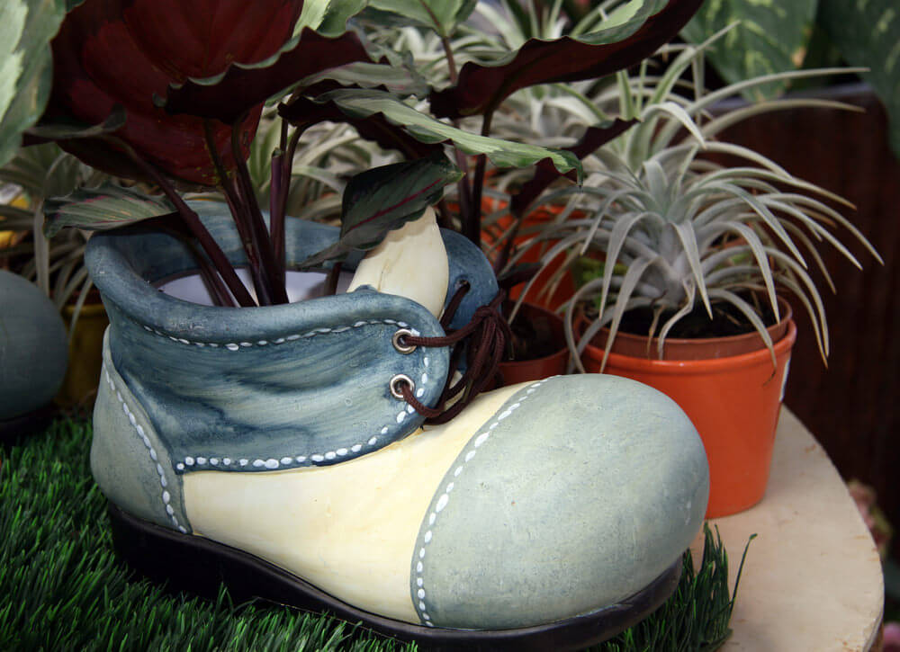 This shoe seems like it's been repainted so it can look more like a miniature shoe. This boy's shoe takes center stage when placed in an indoor setup especially amidst a bunch of usual planters.