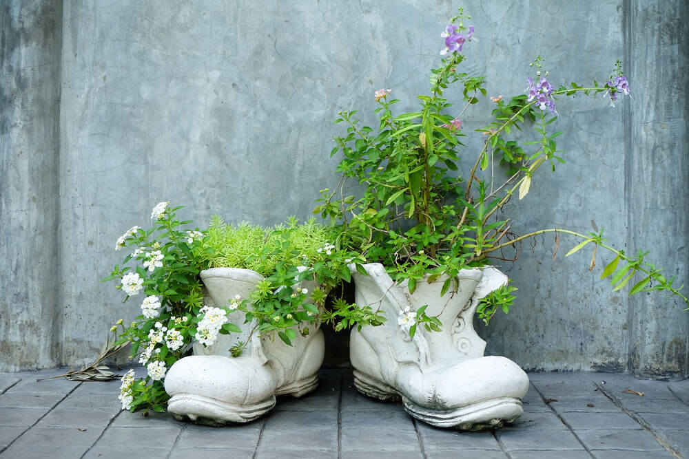 These are shoe planters painted in complete white, each holding a variety of plants – from flowers and vines, to herbs.