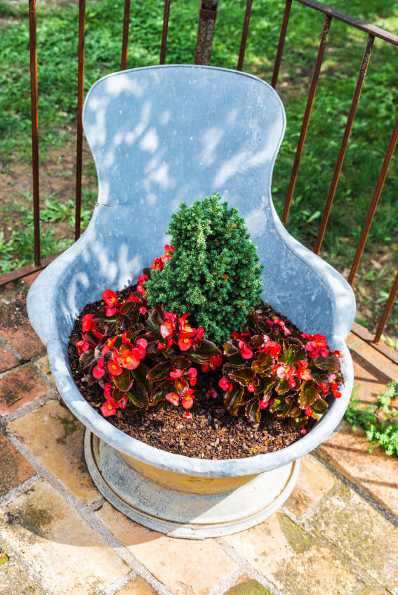 Here's an iron bowl serving as a flower pot on a deck.