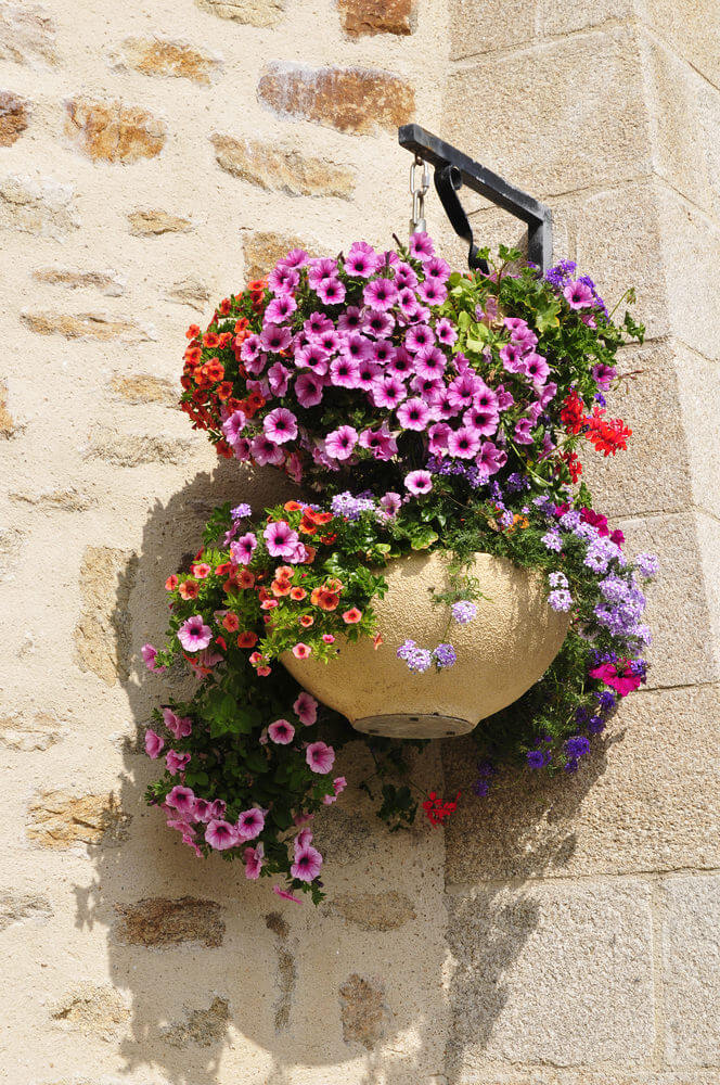 Example of two hanging flower baskets one on top of the other.