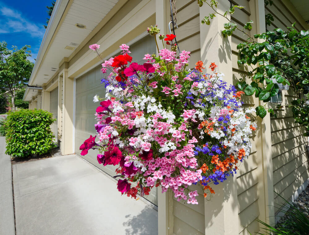 Example of a dramatic hanging flower so full of flowers, including many types and colours, such as pink, white, blue, red, and orange, that you can't see the pot.