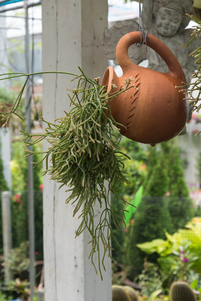 A clay picture held by its handle appearing to be pouring out elongated plants.