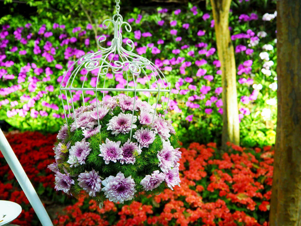Picture of a beautiful round hanging flower arrangement suspended by an attractive white wired cage.